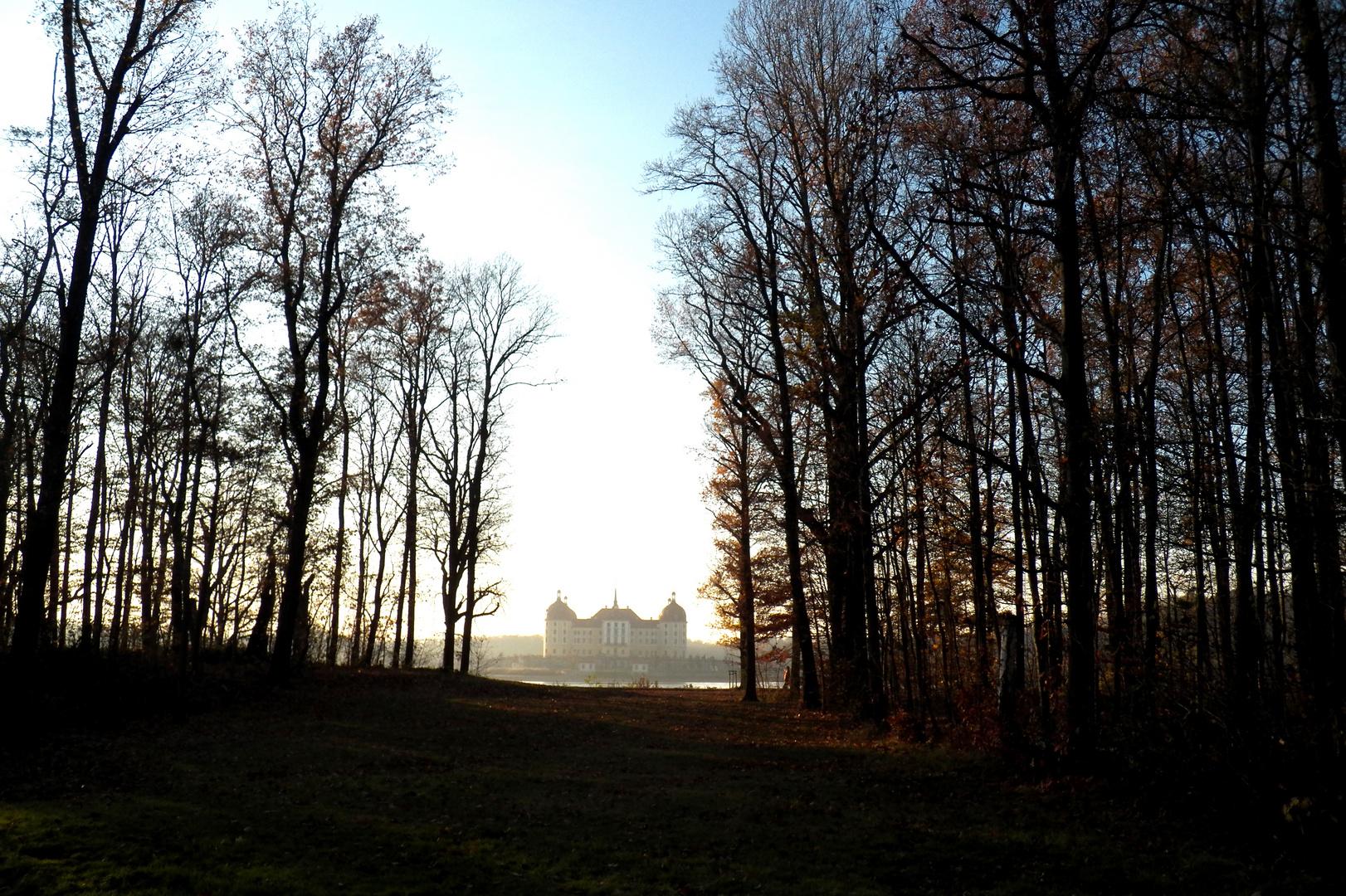 Dem Moritz seine Burg