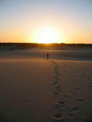 dem Sonnenuntergang hinterher