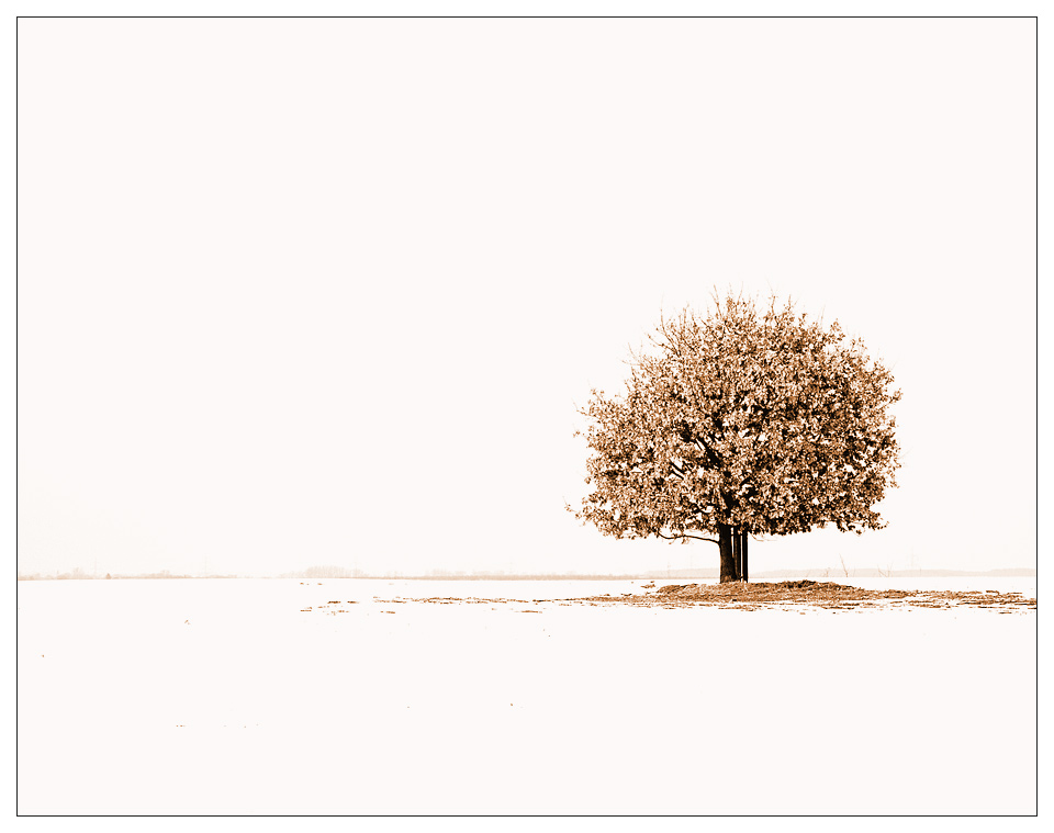 »Dem Winter getrotzt«