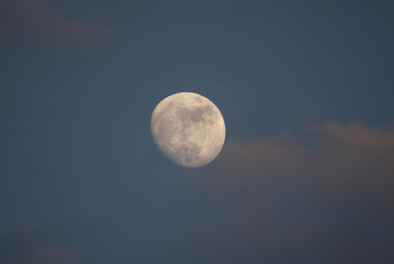 Demi-lune