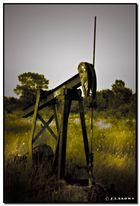DEMON OIL