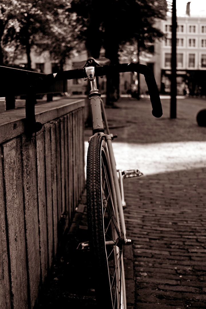 Den Haag Style