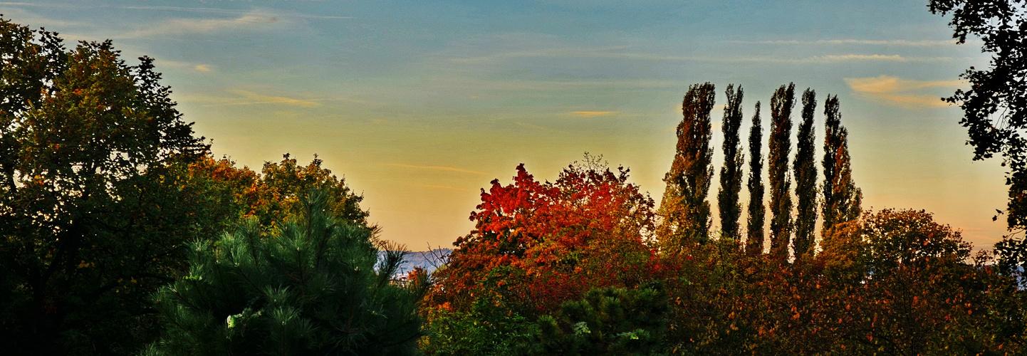 Den Herbst vor der Haustüre............