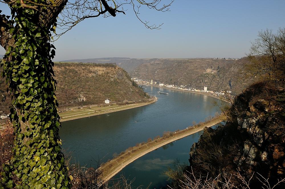 Den höchsten Punkt der Wanderung ist die Loreley, 125 m über dem Rhein, hier...