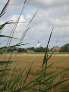 Den Hoorn - Texel