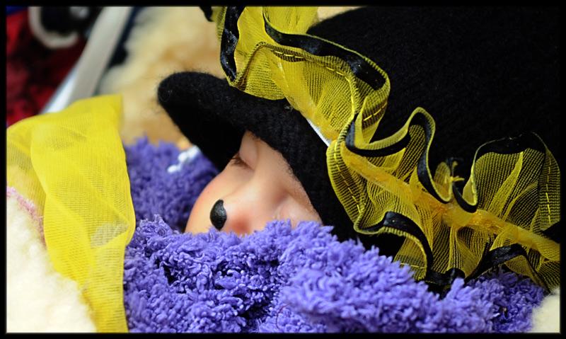Den Karnevalszug verschlafen :-)