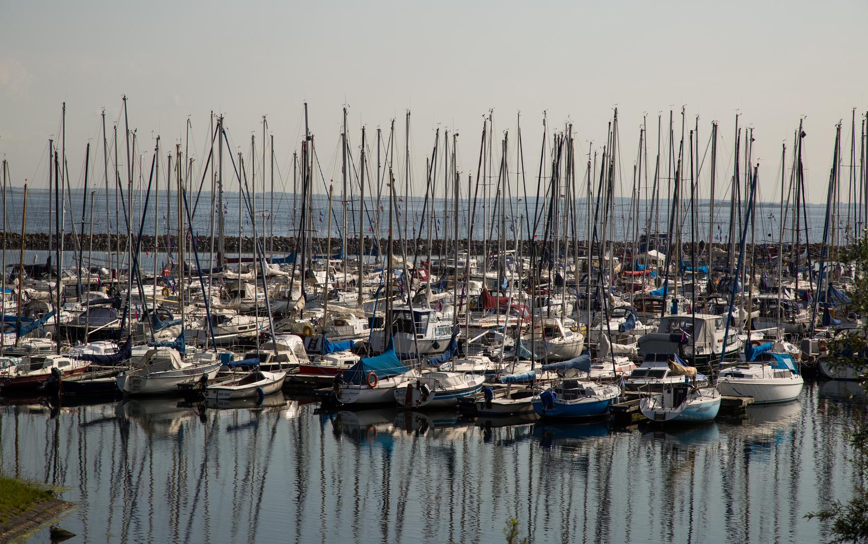 Den Osse Hafen - Grevelinger Meer - Zeeland
