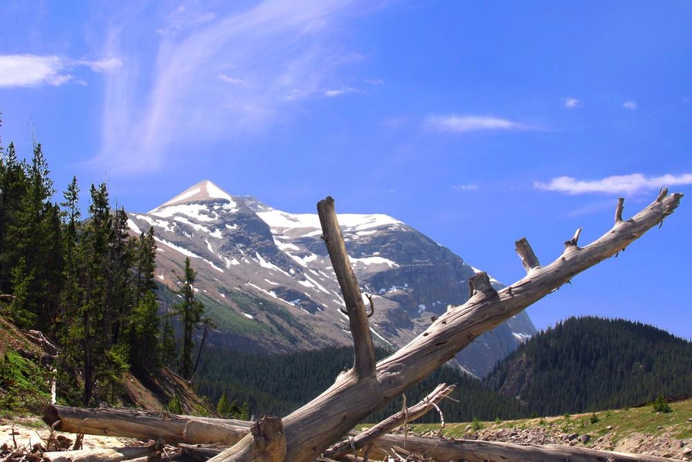 Den Rockies recht nah