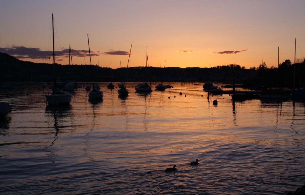 den Sonnenuntergang betrachten