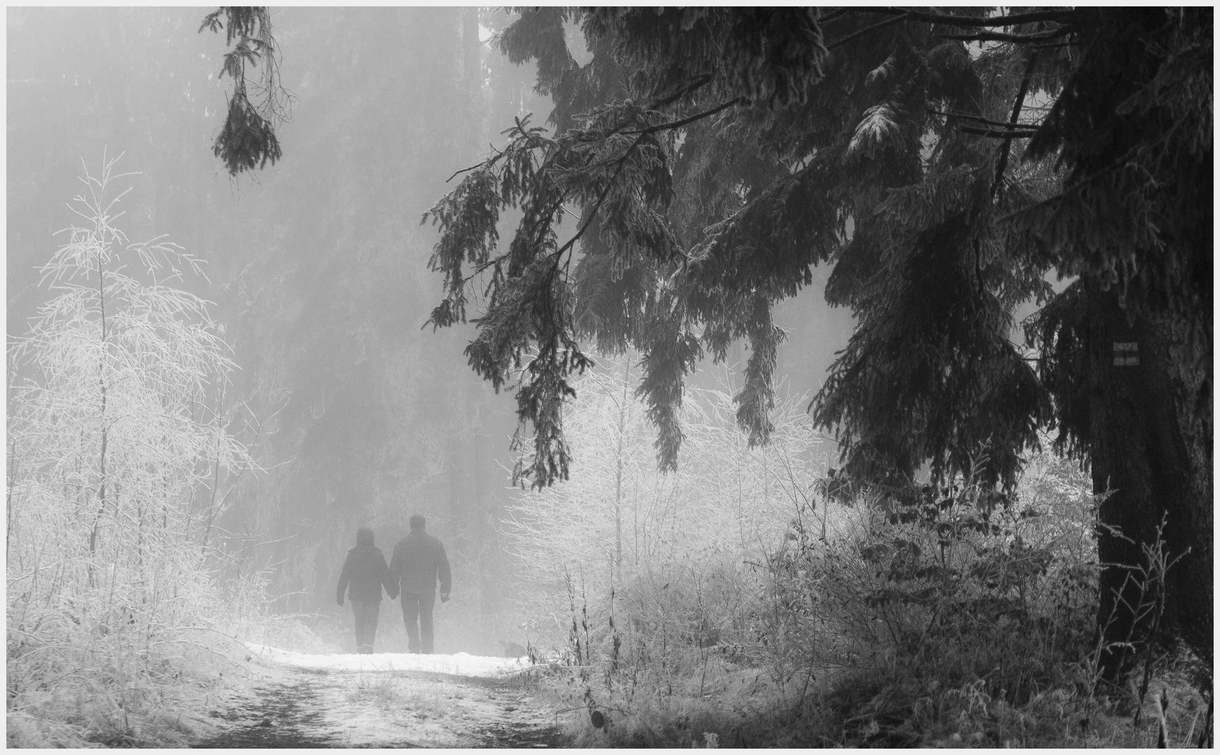 ...den Weg gemeinsam gehen