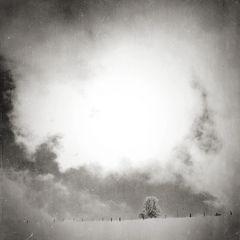 den winter mögen [1]