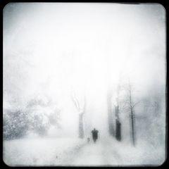 den winter mögen