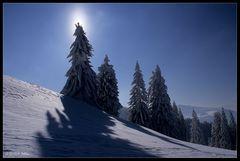 Den Winter noch nicht gehen lassen ...