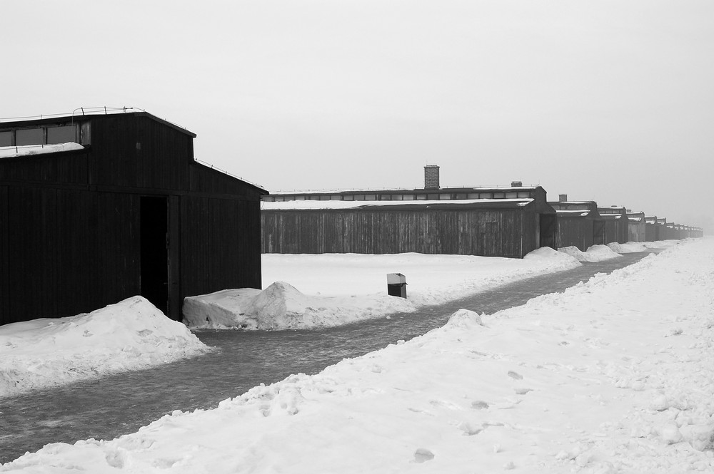 Denk Mal an Auschwitz