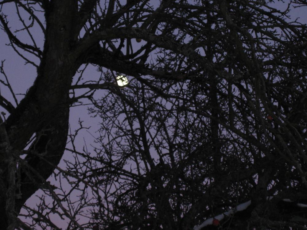 Denk mal an den Mond