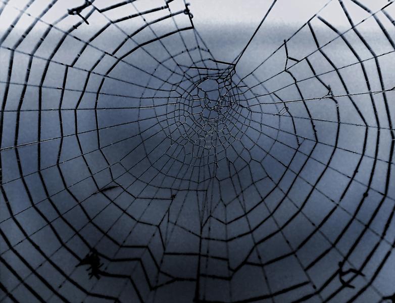dentro la tela del ragno