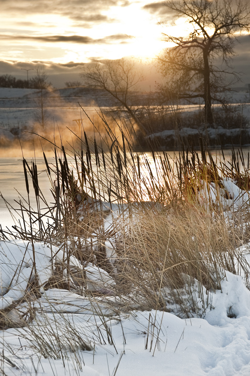 Denver Winter Landschaft