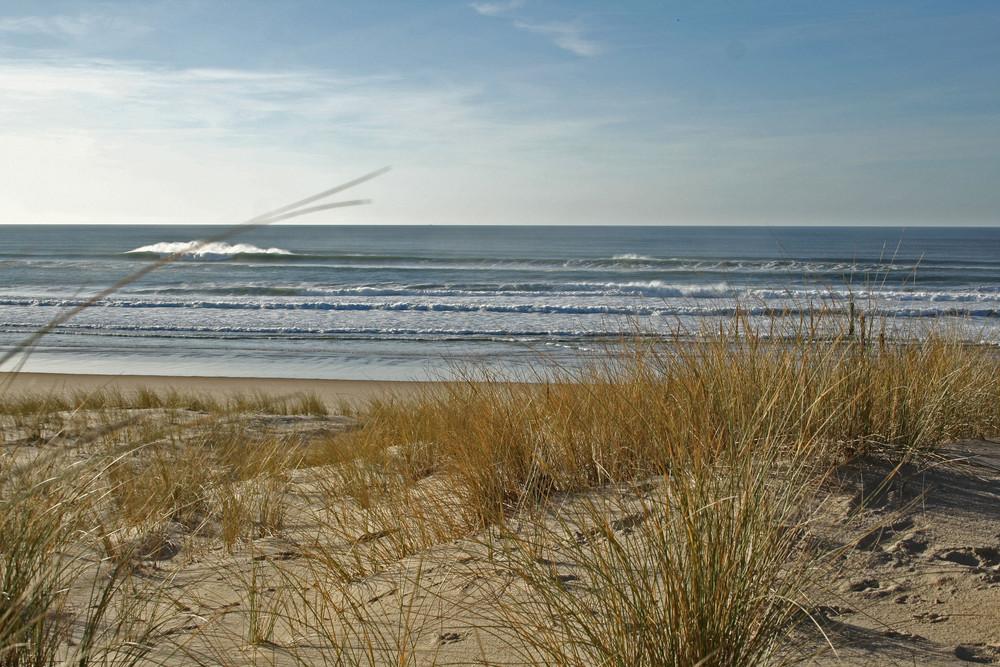 Depuis la dune