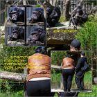 Der Affe denkt, ...der Mensch fotografiert das was Er/er denkt...##1453#