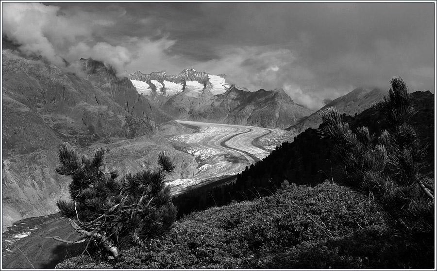 Der Aletsch - Gletscher