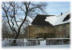 Der alte Baum und das Kloster