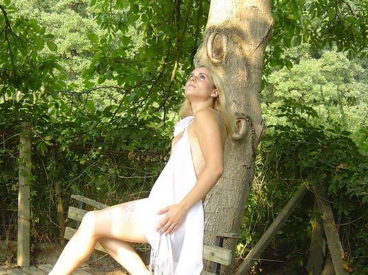 .... der alte Baum und ein Engel