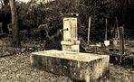der alte Brunnen