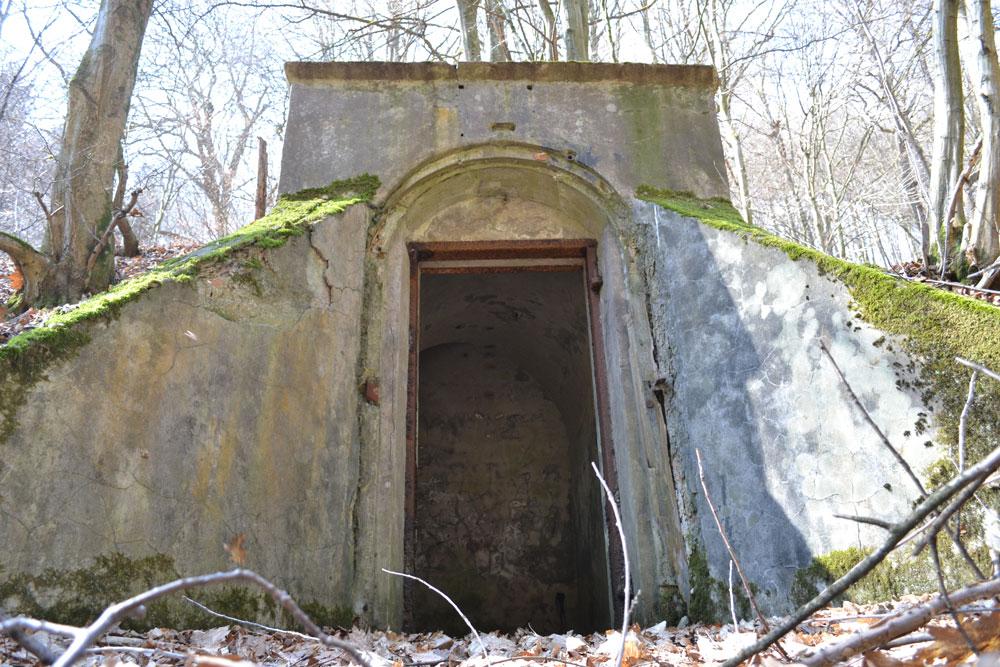Der alte Bunker im Wald