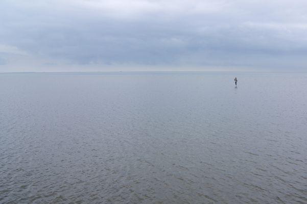 Der alte Fotograf und das Meer