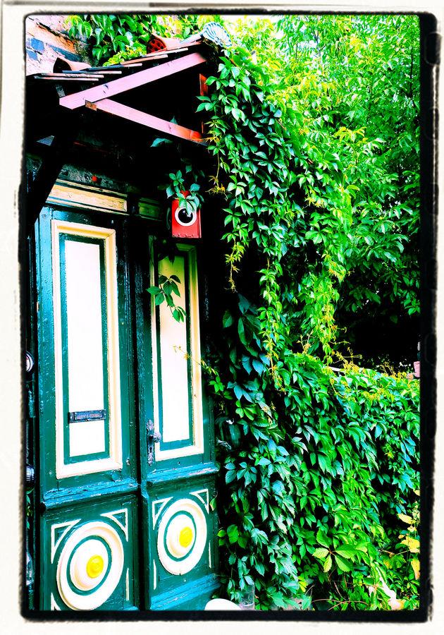 Der alte Garten