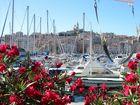 Der Alte Hafen im Sommerkleid