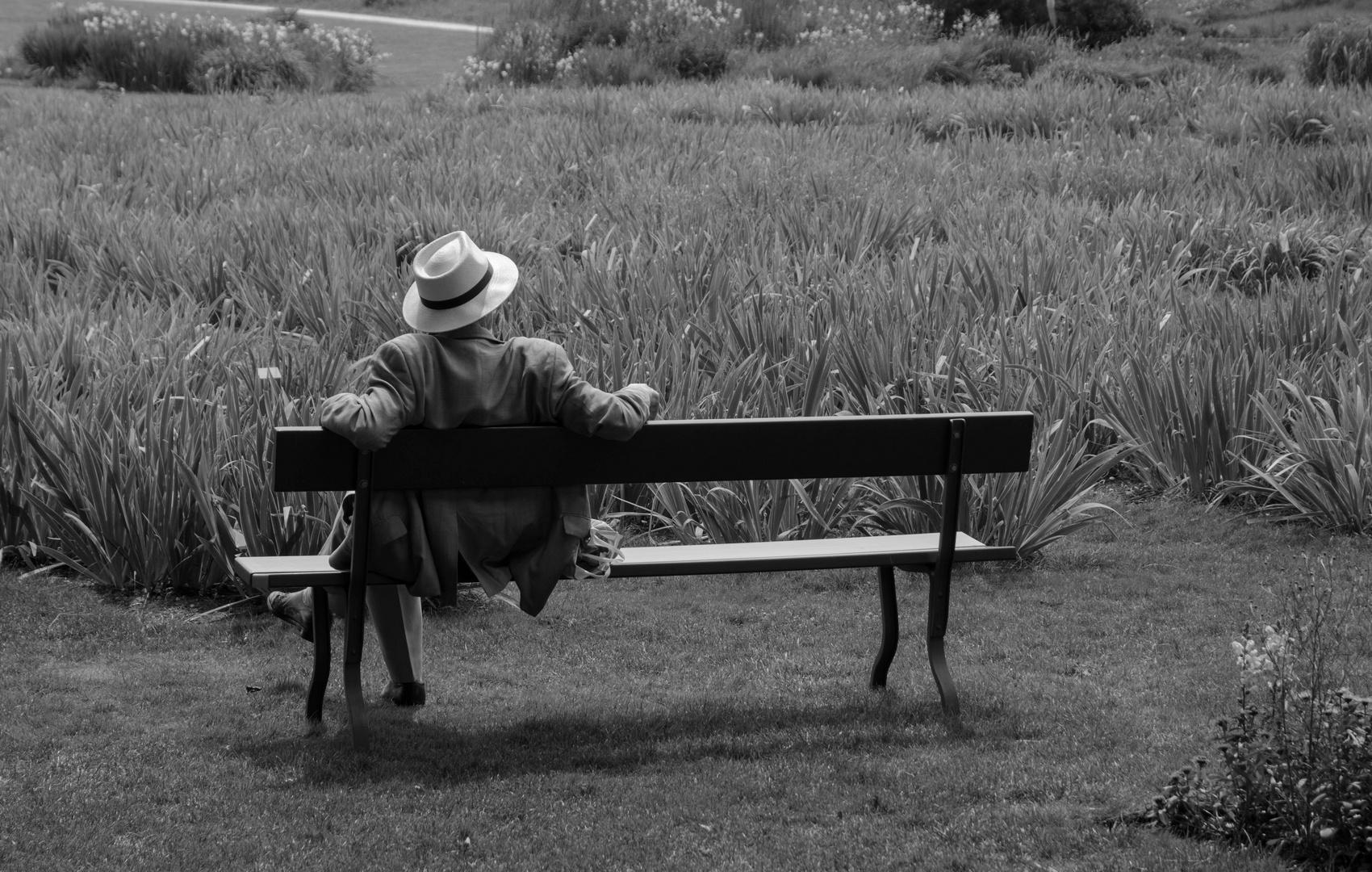 Der alte Mann am Blumenmeer