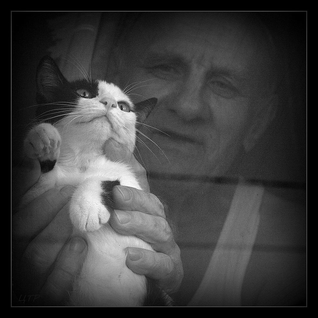 der alte Mann und das Kätzchen