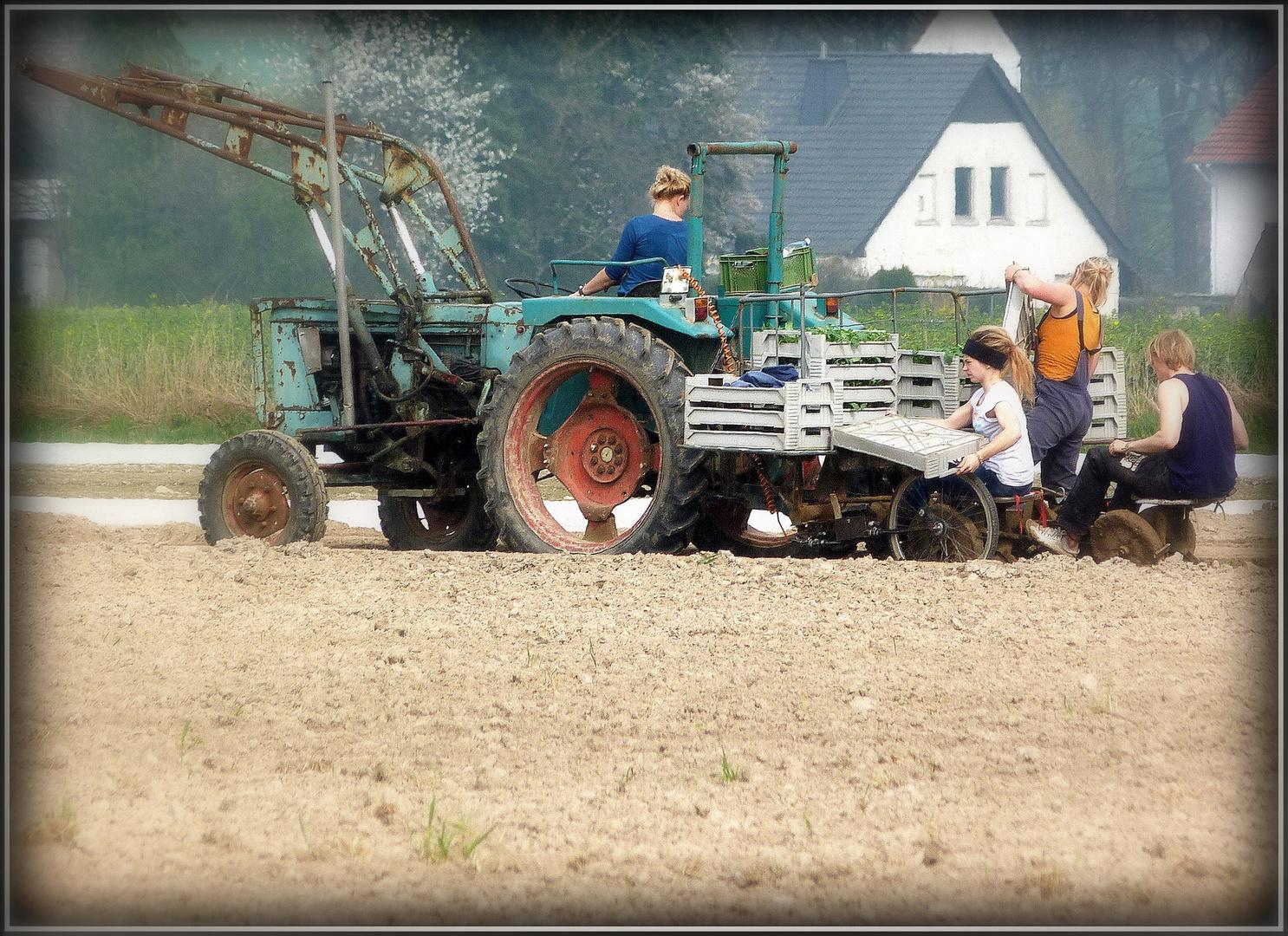 der alte Traktor...