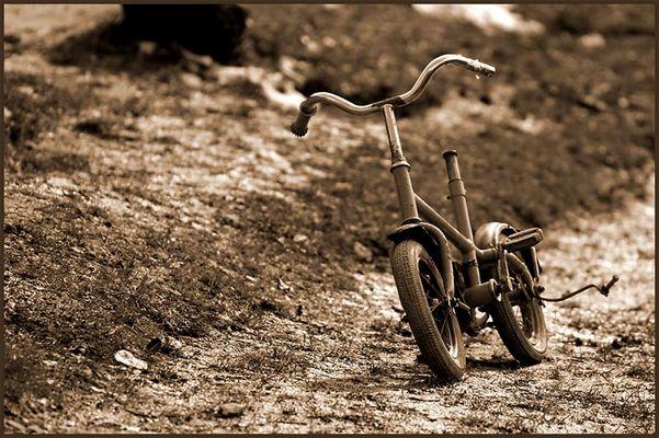 Der Anfang aller Harley Träume