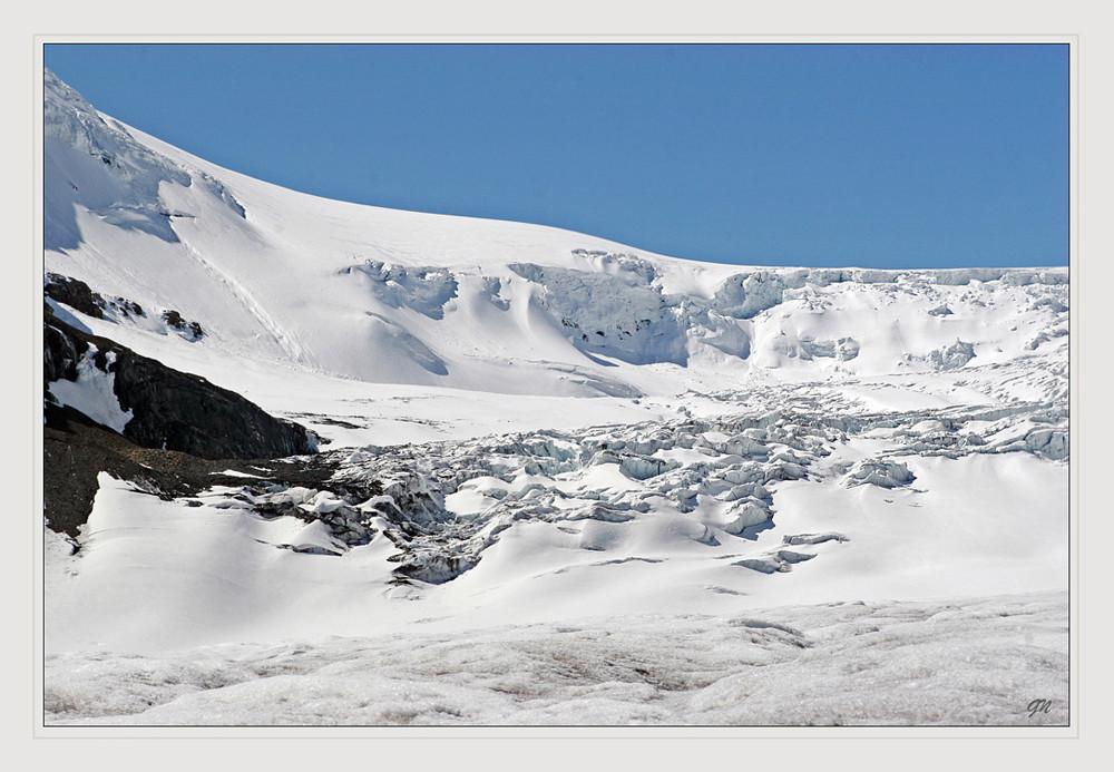 Der Athabasca-Gletscher