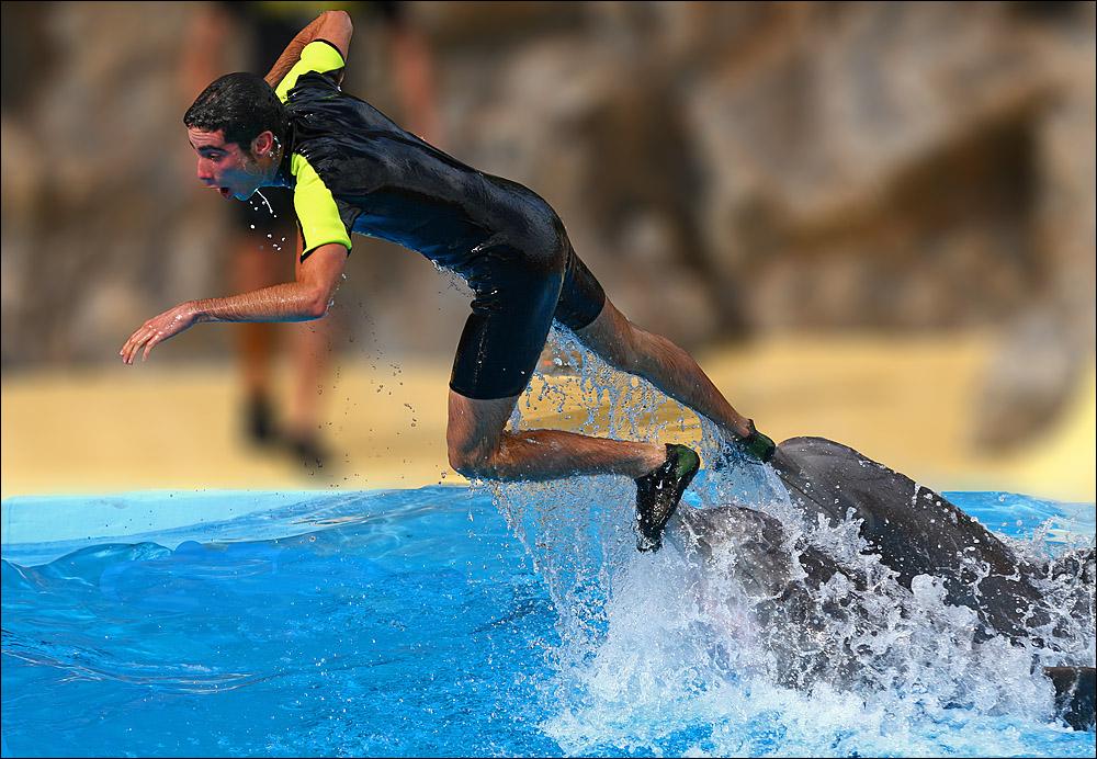 Der auf den Delfinen ritt