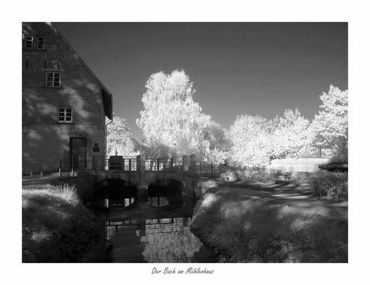 Der Bach am Mühlenhaus
