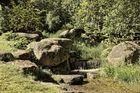Der Bachlauf......., Impressionen aus dem Britzer Garten