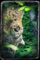 Der Baumvogel