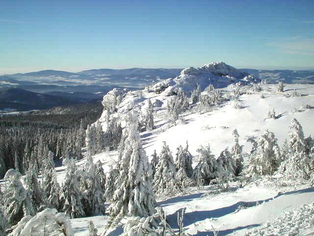 Der Bayerischer Wald im Winter /2