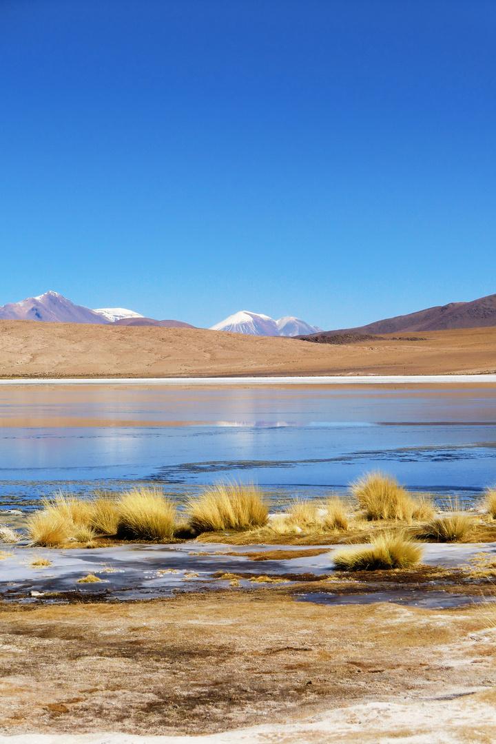 Der Berg am See der Flamingo