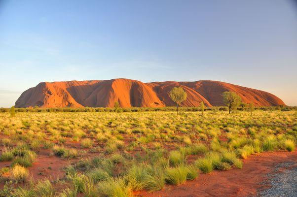 der Berg glüht und die Wüste blüht