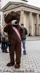 Der Berliner Bär :-)