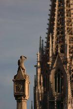 ...der Bewacher des Dom´s - das Brückenmännchen