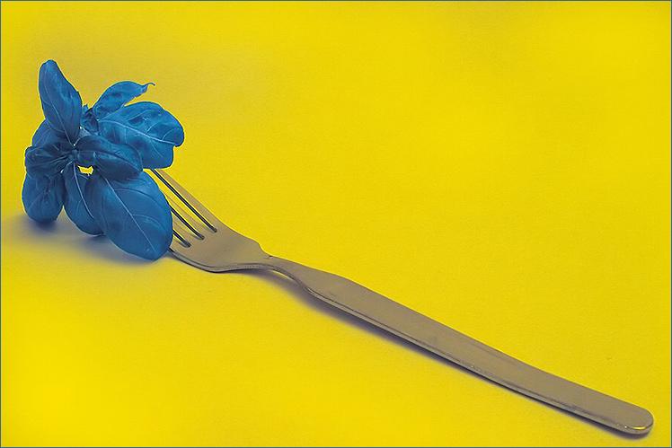 Der blaue Schirm reaktiviert seinen account mit Hilfe blauen Basilikums und einer Gabel - und gelb!