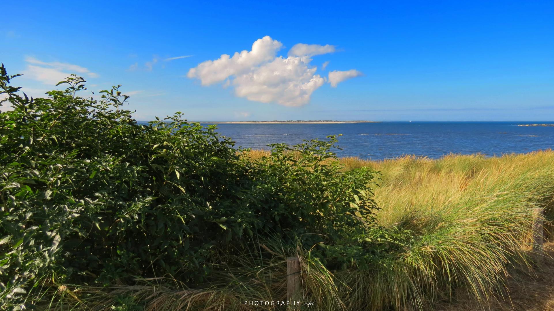 """Der Blick auf """"Baltrum - Bald-rum"""" von der Insel Langeoog"""