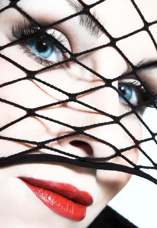 Der Blick durch das Netz