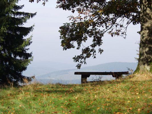 Der Blick ins Siegerland...