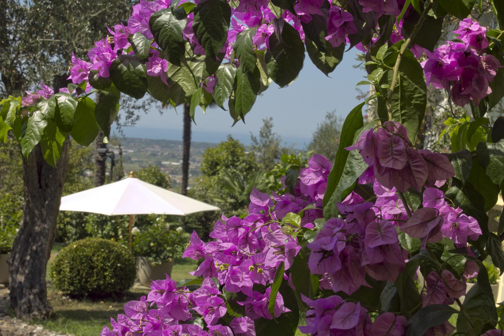 Der Blick nach Viareggio ( Italien )